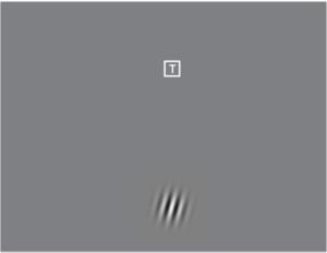 Gabor Task screenshot